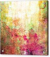 Abstract Print 14 Acrylic Print
