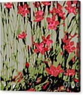 Abstract Red Flowers Acrylic Print