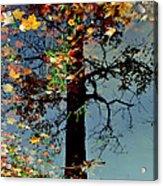 Abstract Tree Acrylic Print
