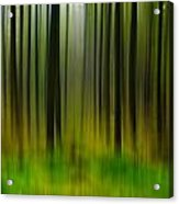 Abstract Trees Acrylic Print