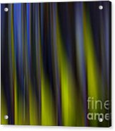 Abstract Vertical Red Yellow Blue And Green Acrylic Print