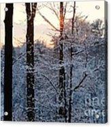 Abstract Winter Sunset Acrylic Print