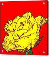 Abstract Yellow Rose Acrylic Print