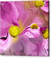 Abstracted Pink Acrylic Print