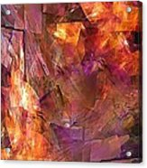 Abstraction  0273 Marucii Acrylic Print