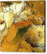Abstraction 0434 Marucii Acrylic Print