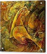 Abstraction 0627 - Marucii Acrylic Print