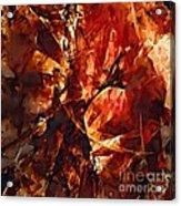 Abstraction  272 - Marucii Acrylic Print
