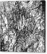 Abstraction B-w 0554 - Marucii Acrylic Print