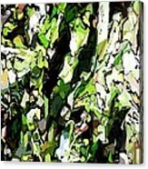 Abstraction Green And White Acrylic Print