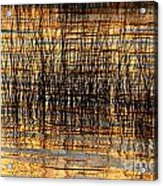 Abstract Reed And Water Patterns Acrylic Print