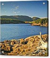 Acadia  Acrylic Print
