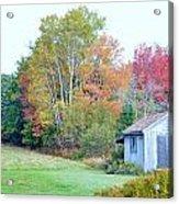 Acadia Autumn 2014 Acrylic Print