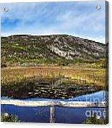 Acadia  Autumn Acrylic Print