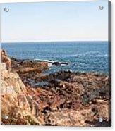 Acadia Coast Acrylic Print