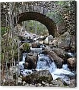 Acadia National Park Bridge Acrylic Print