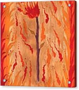 Ace Of Wands Acrylic Print