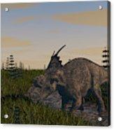 Achelousaurus Grazing In Swamp Acrylic Print