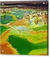 Acid Lakes Of Dallol Volcano Acrylic Print by Liudmila Di