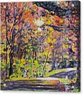 Acorn Lake Series 001 Acrylic Print