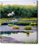 Across Duck Creek Acrylic Print by Karol Wyckoff