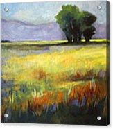 Across The Field Acrylic Print
