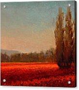 Across The Tulip Field - Horizontal Landscape Acrylic Print