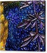 Acrylic On Canvas Acrylic Print