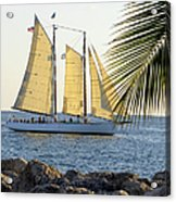 Sailing On The Adirondack In Key West Acrylic Print