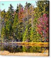 Adirondack Color Near Old Forge New York Acrylic Print