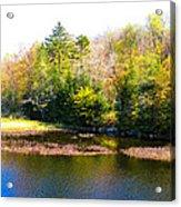 Adirondack Color X Acrylic Print