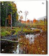 Adirondack Pond Iv Acrylic Print
