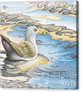 Adrift Acrylic Print by Wayne Hardee