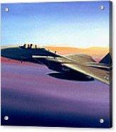 Advantage Eagle Acrylic Print by Michael Swanson