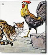 Aesop: Cat, Cock, And Mouse Acrylic Print