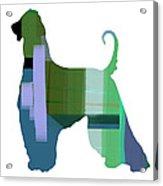 Afghan Hound 1 Acrylic Print by Naxart Studio