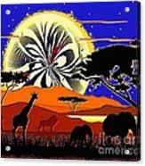 Africa At Sunset  Acrylic Print