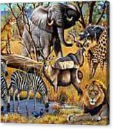 African Collage Acrylic Print by Cynthie Fisher