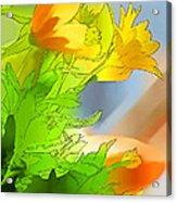 African Daisy I - Digital Paint Acrylic Print