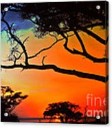 African Skies Acrylic Print