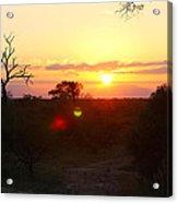 African Sunset Acrylic Print