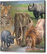 Africa's Big Five Acrylic Print