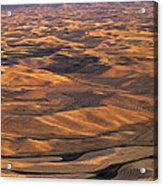 After Harvest From Steptoe Butte Acrylic Print by Latah Trail Foundation