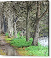 After High Tide Acrylic Print