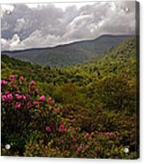 After The Storm At Graveyard Fields Acrylic Print