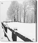 After The Winter Storm Acrylic Print