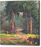 Afternoon Arbor Acrylic Print by Michael Humphries