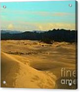Afternoon At Oregon Dunes Acrylic Print