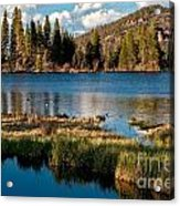 Afternoon At Sprague Lake Acrylic Print