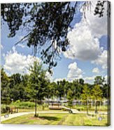 Afternoon At The Park Acrylic Print